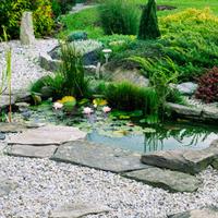 Wodne elementy w ogrodzie: wodne, kaskady i wodospady.