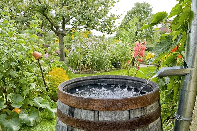 łapanie deszczówki - wody z rynien
