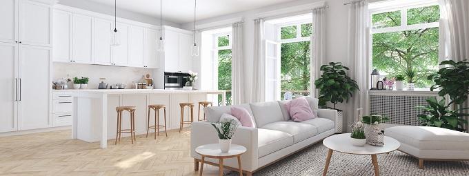мебель в гостиной, совмещенная с кухней