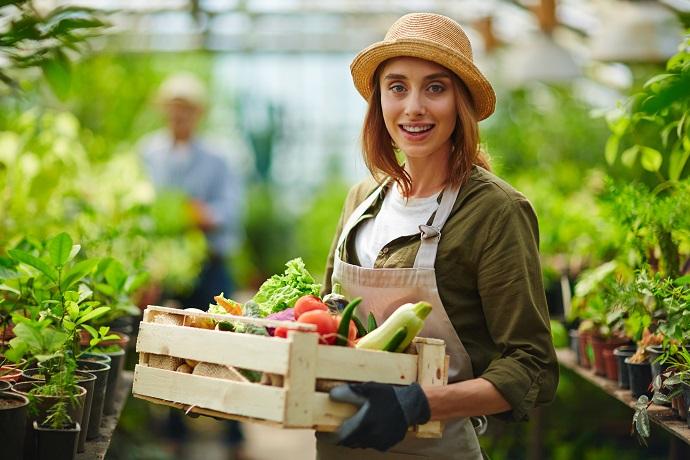 ogrodnik warzywa i ich uprawa
