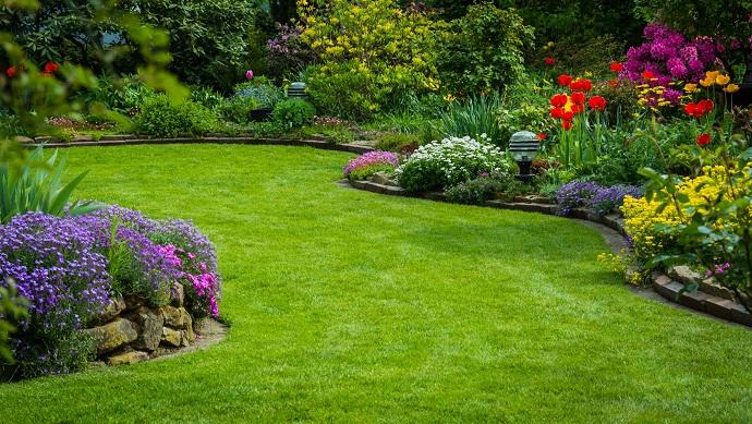 Piękny trawnik ułożony z rolki