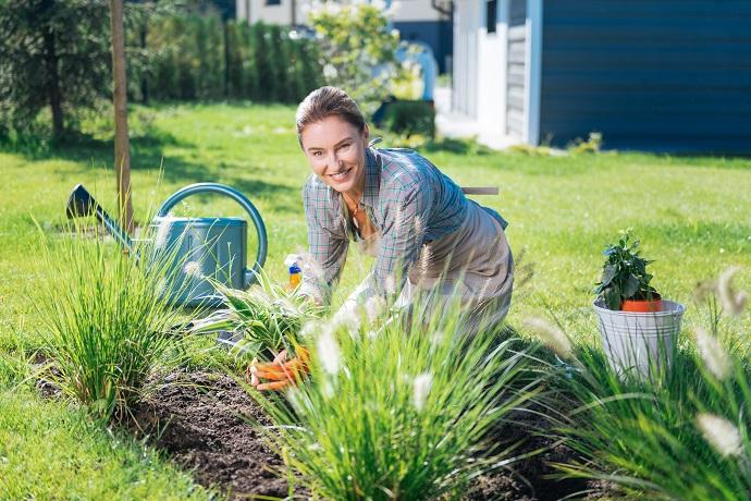 prace ogrodowe na rabatce