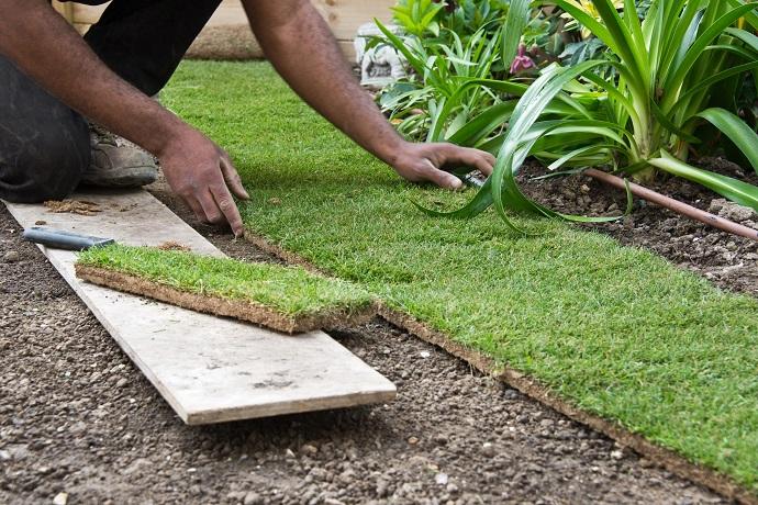 Układanie trawy z rolki